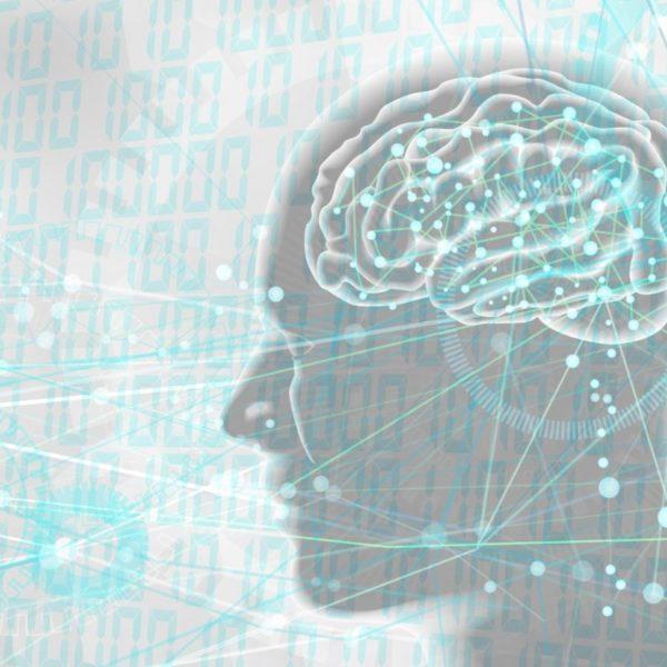 意識は脳が作る幻想なのか? 受動意識仮説と魂のお話