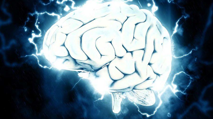 脳死をスピリチュアル的に解説。脳は死んでも魂は死なないのです