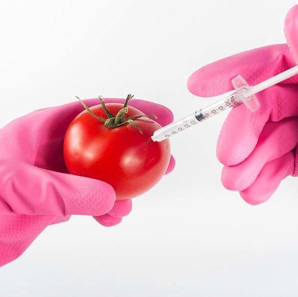 残留農薬や食品添加物、化学調味料や遺伝子組み換え食品は、どれだけ身体に影響を与えるのか?